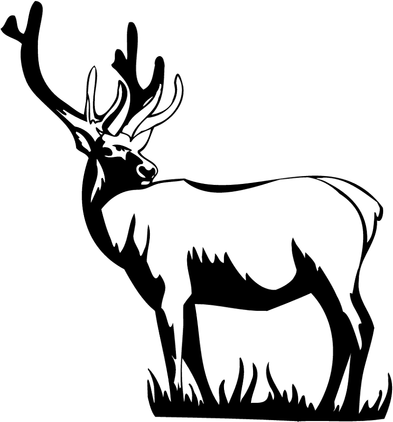 Download Deer Clipart Black and White for free