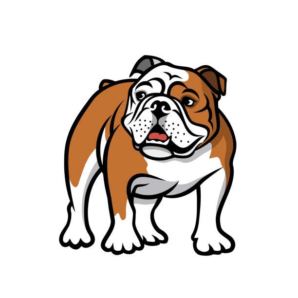 English Bulldog clip art