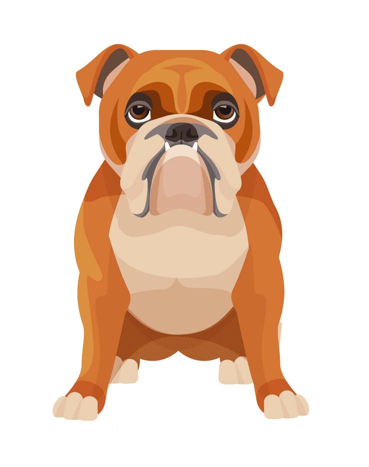 English Bulldog clipart png free