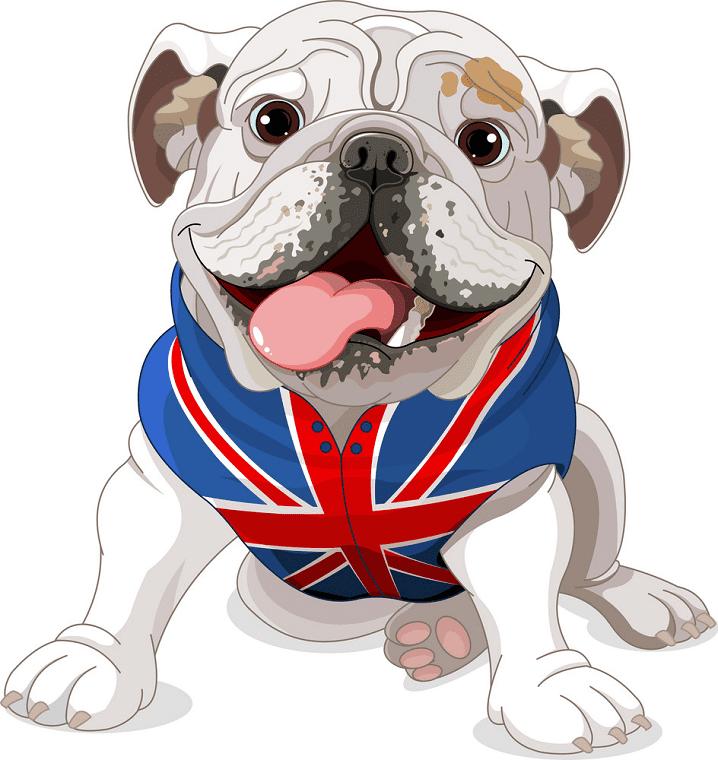 English Bulldog clipart png images