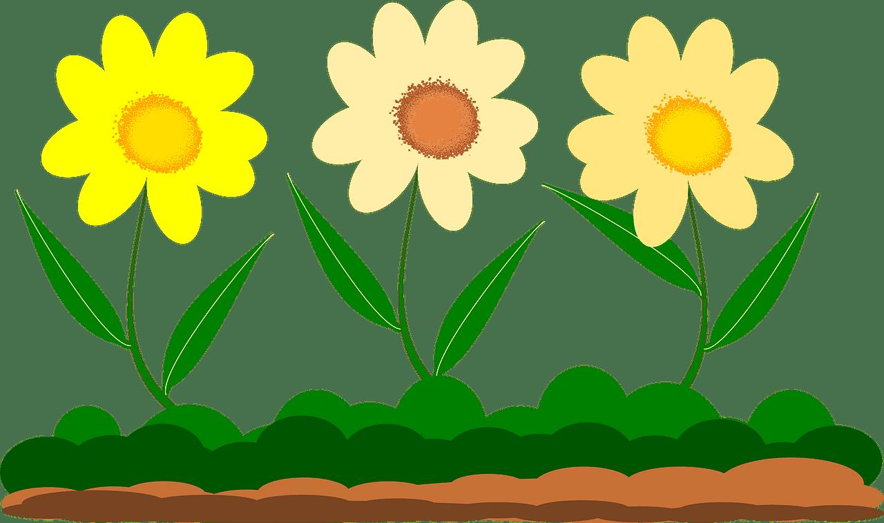 Flowers Garden clipart transparent