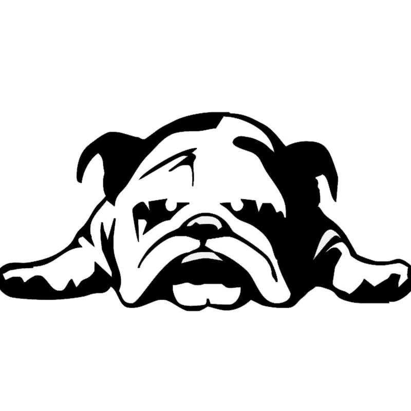 Free Bulldog clipart png image