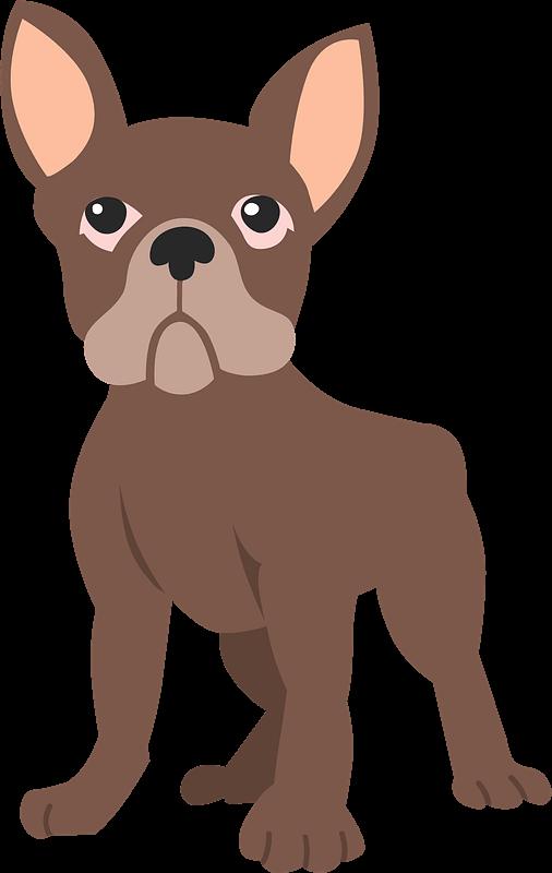 Free Bulldog clipart transparent image