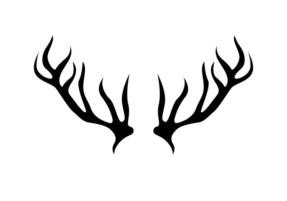 Free Deer Antlers clipart png image