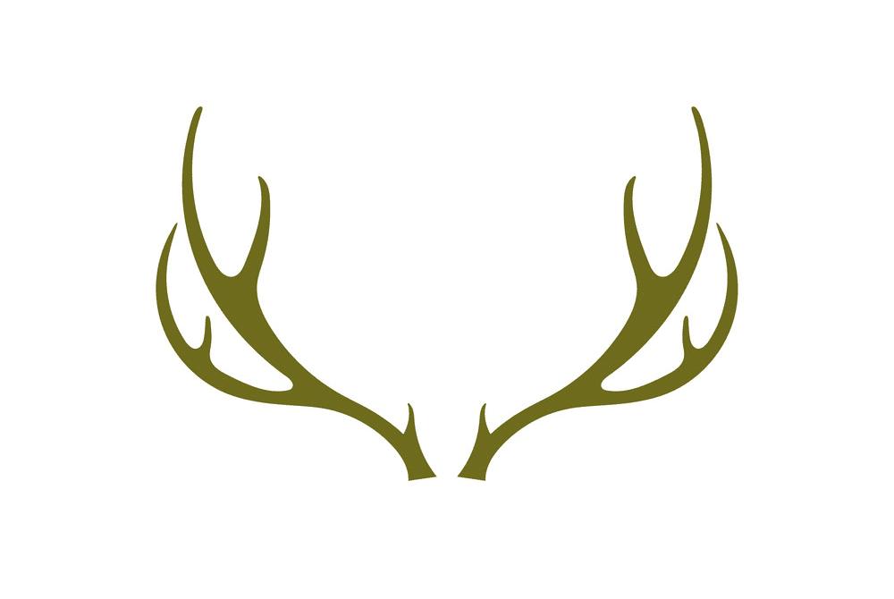 Free Deer Antlers clipart