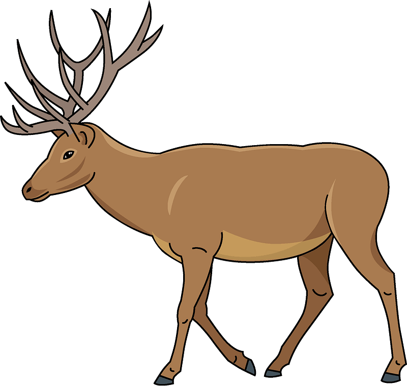 Free Deer clipart transparent
