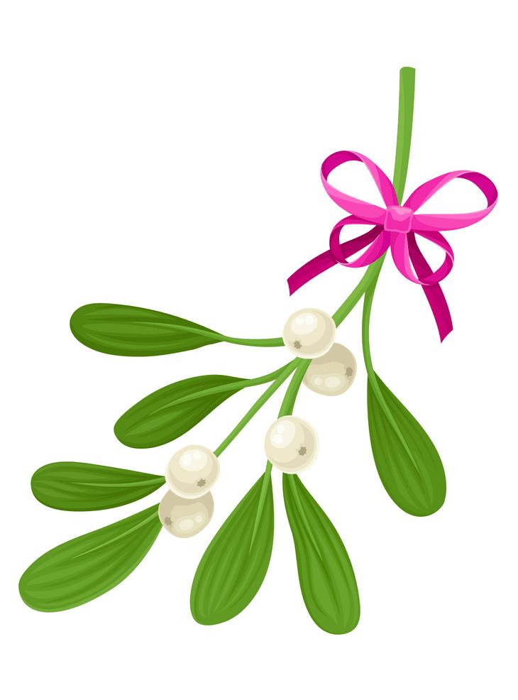 Free Mistletoe clipart download