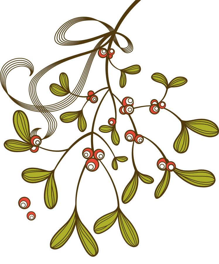 Free Mistletoe clipart image
