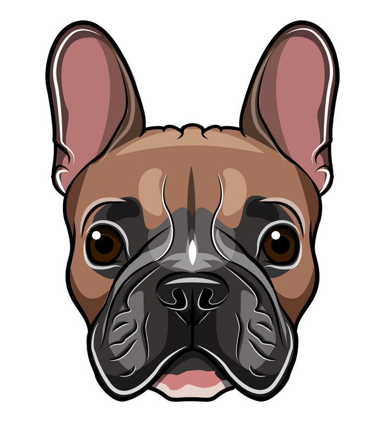 French Bulldog Face clipart png