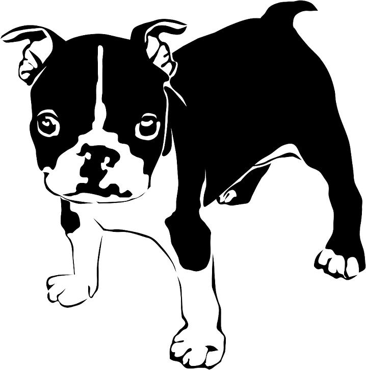 French Bulldog clip art png image