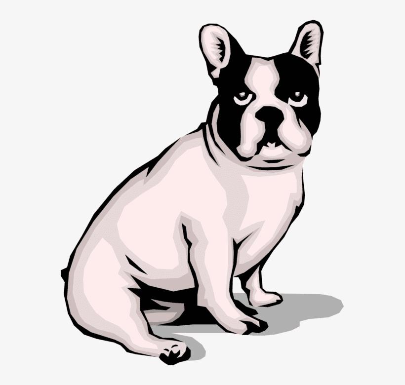 French Bulldog clip art png