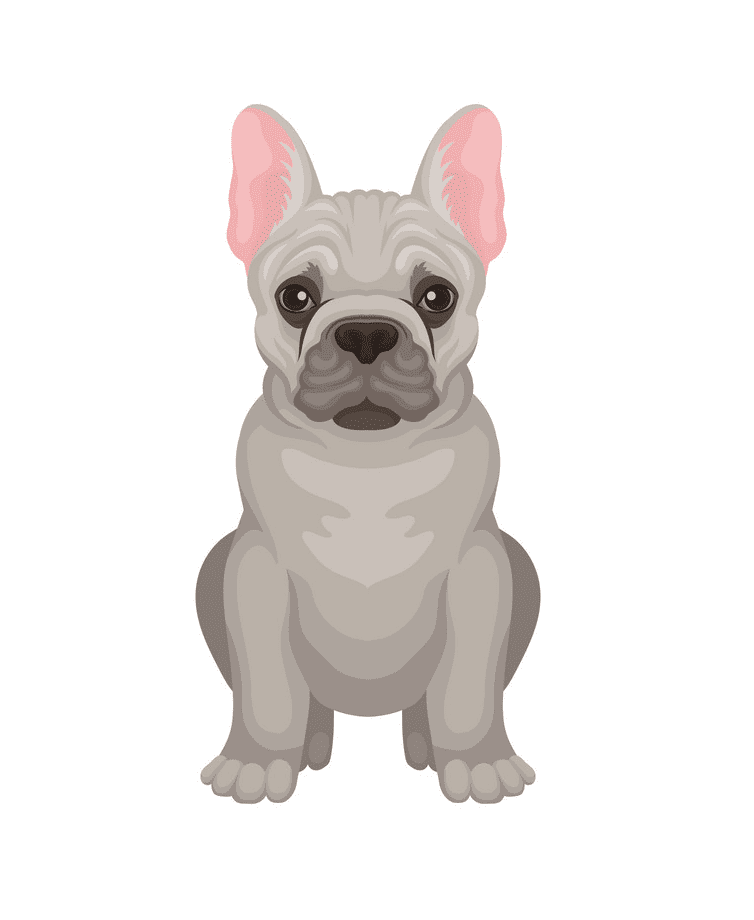 French Bulldog clipart for you to download