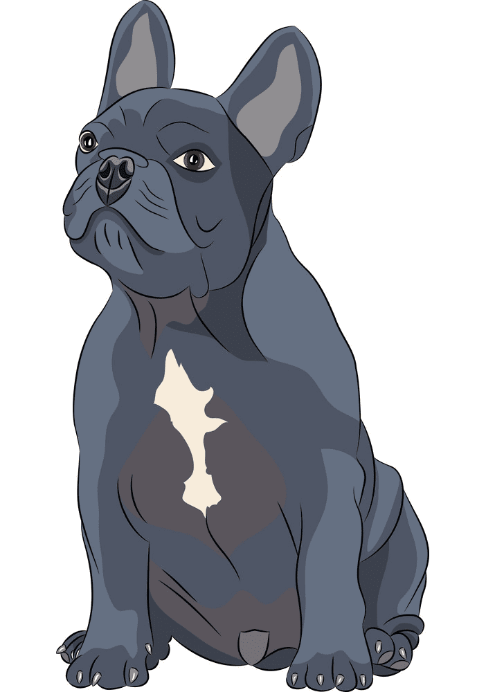 French Bulldog clipart images