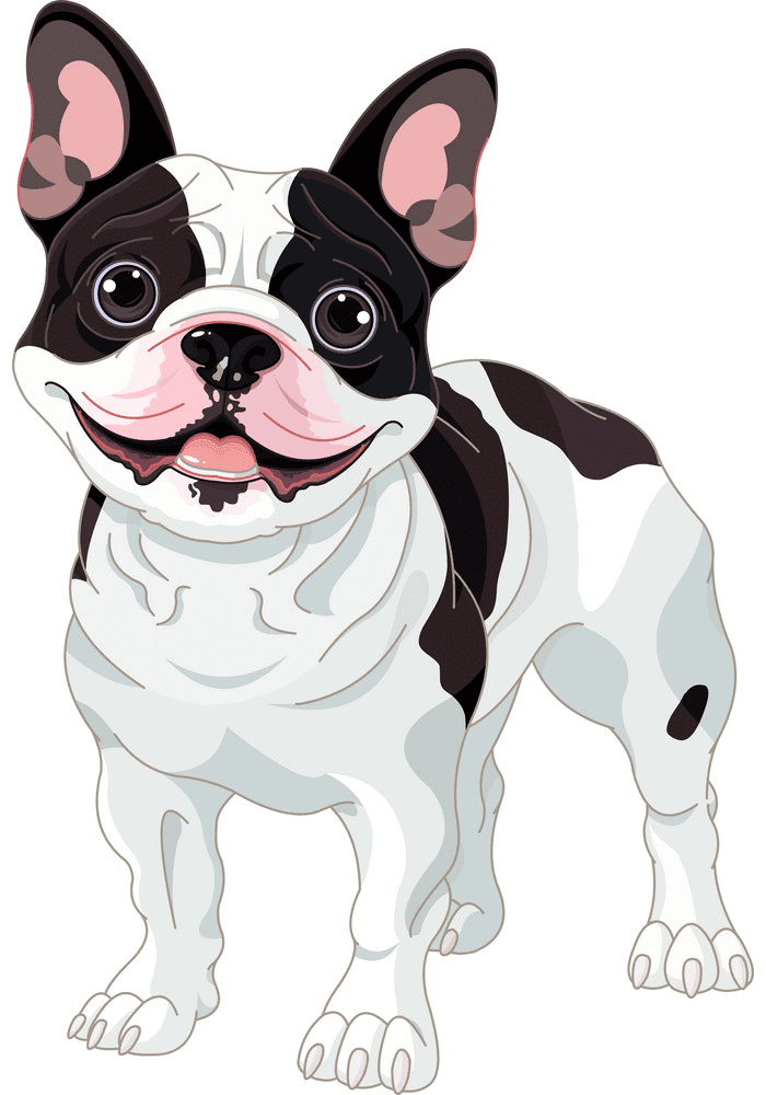 French Bulldog clipart png