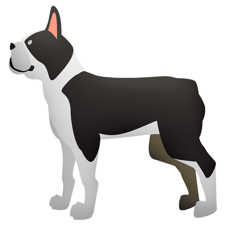French Bulldog clipart transparent background image