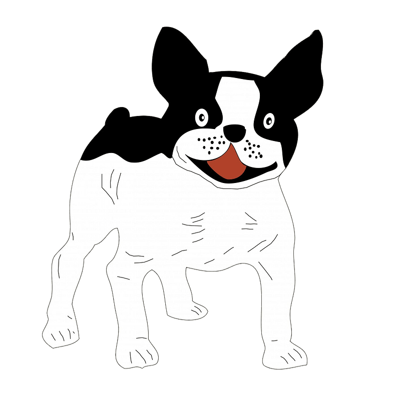 French Bulldog clipart transparent background