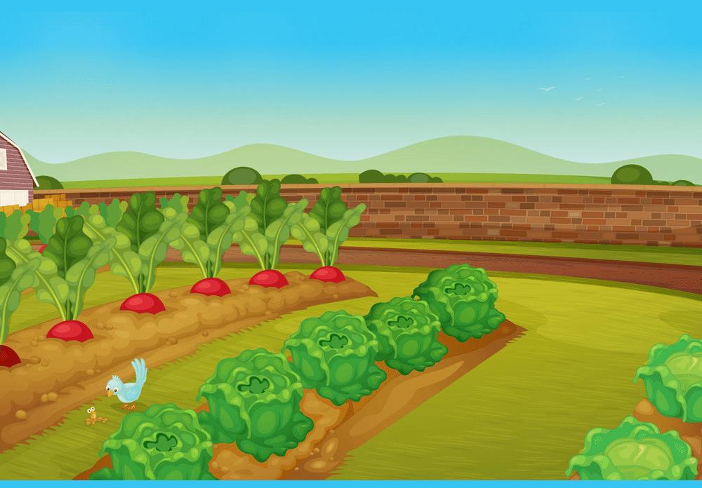 Garden clipart 3