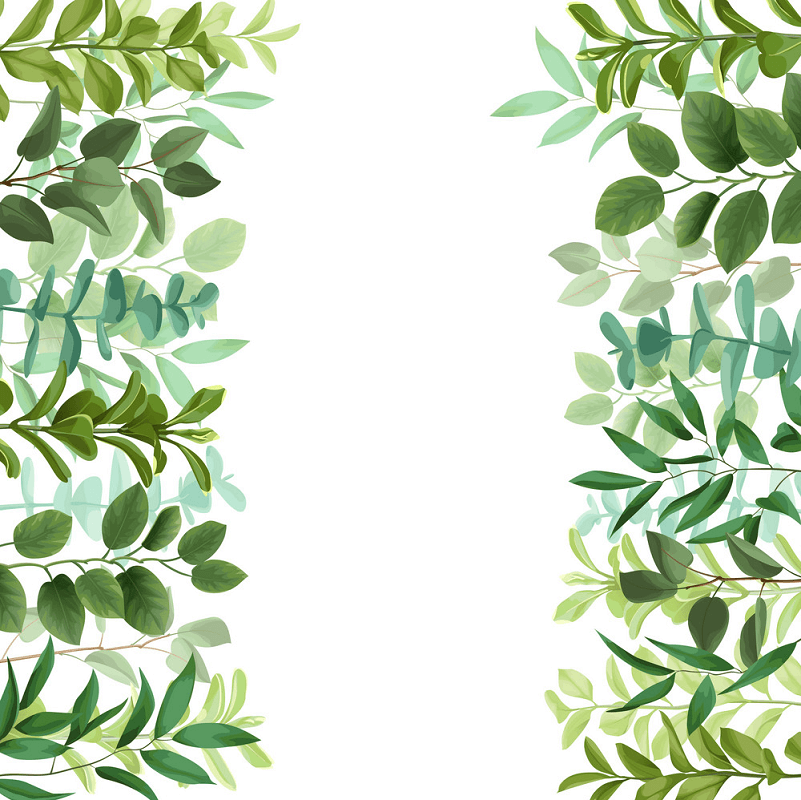 Greenery Border clipart images