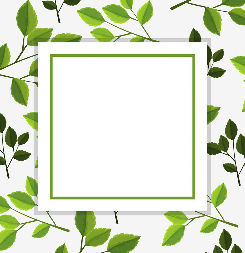Greenery Border clipart png