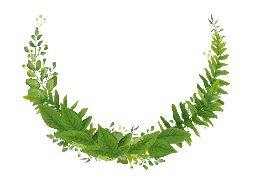 Greenery Wreath clipart 4