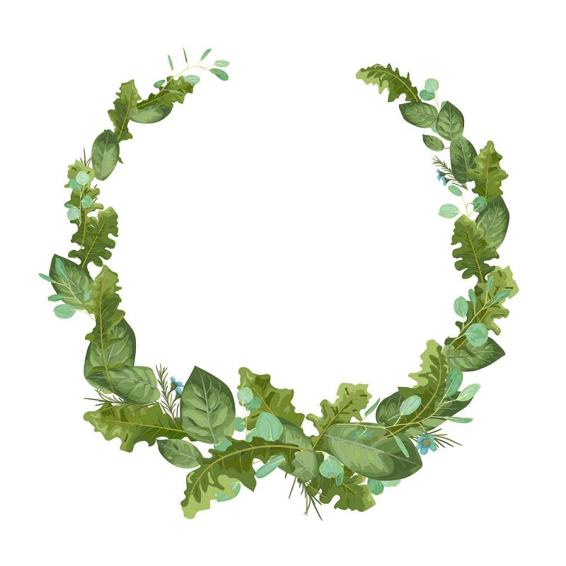 Greenery Wreath clipart image