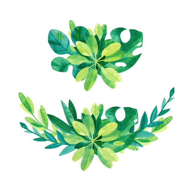 Greenery clipart 7