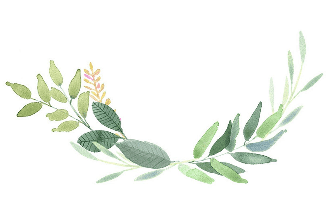Greenery clipart images