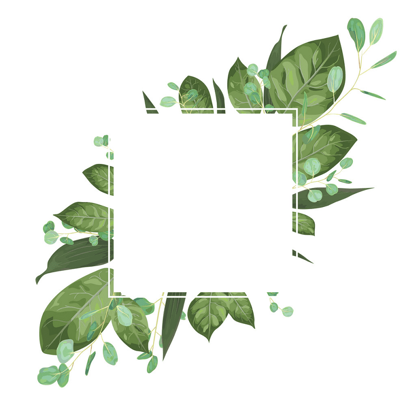 Greenery clipart png images