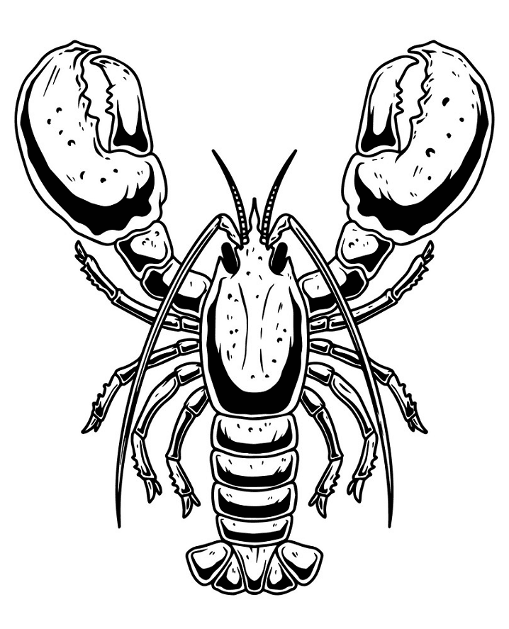 Lobster Clipart Black and White images