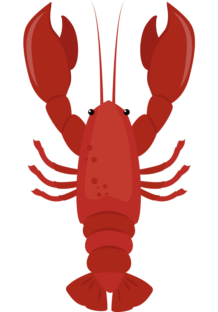 Lobster clipart 1
