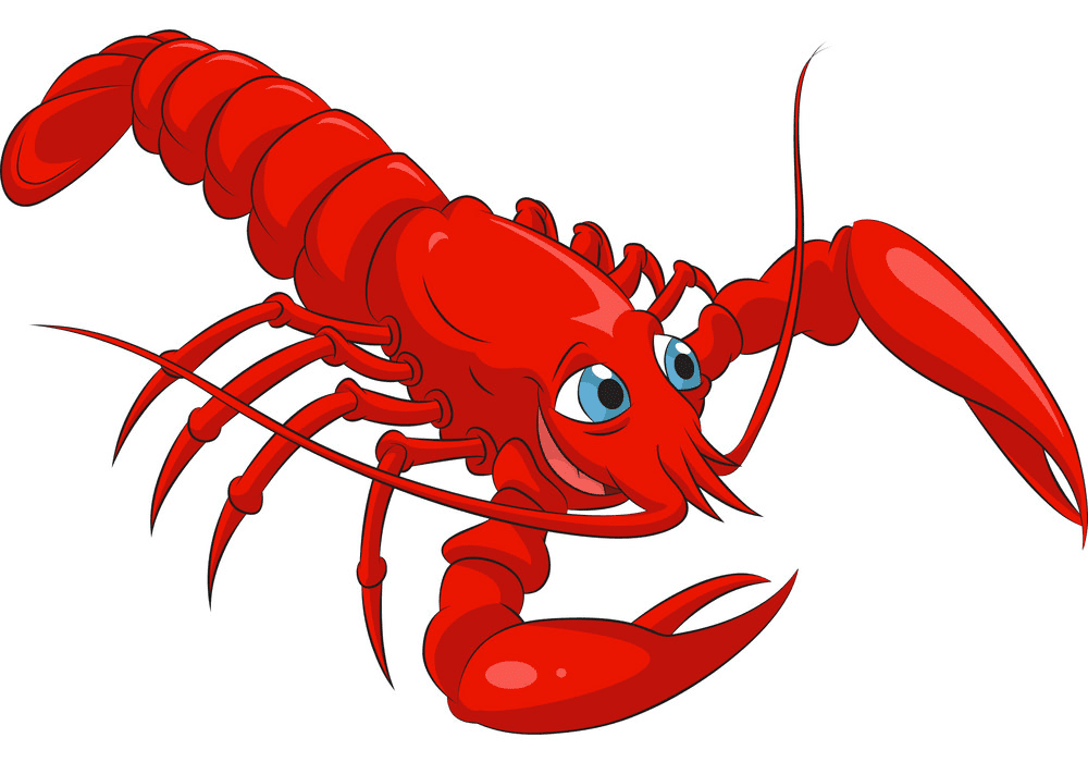 Lobster clipart images