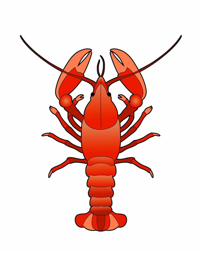 Lobster clipart png image