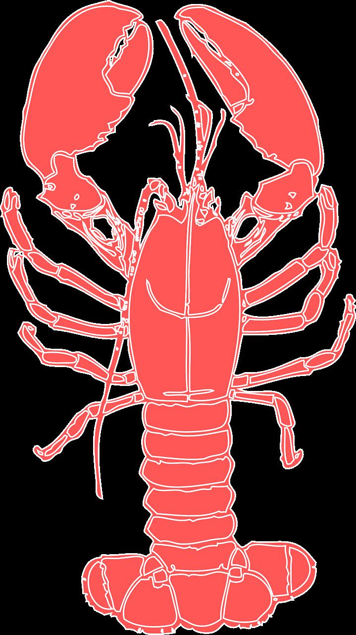 Lobster clipart transparent 1