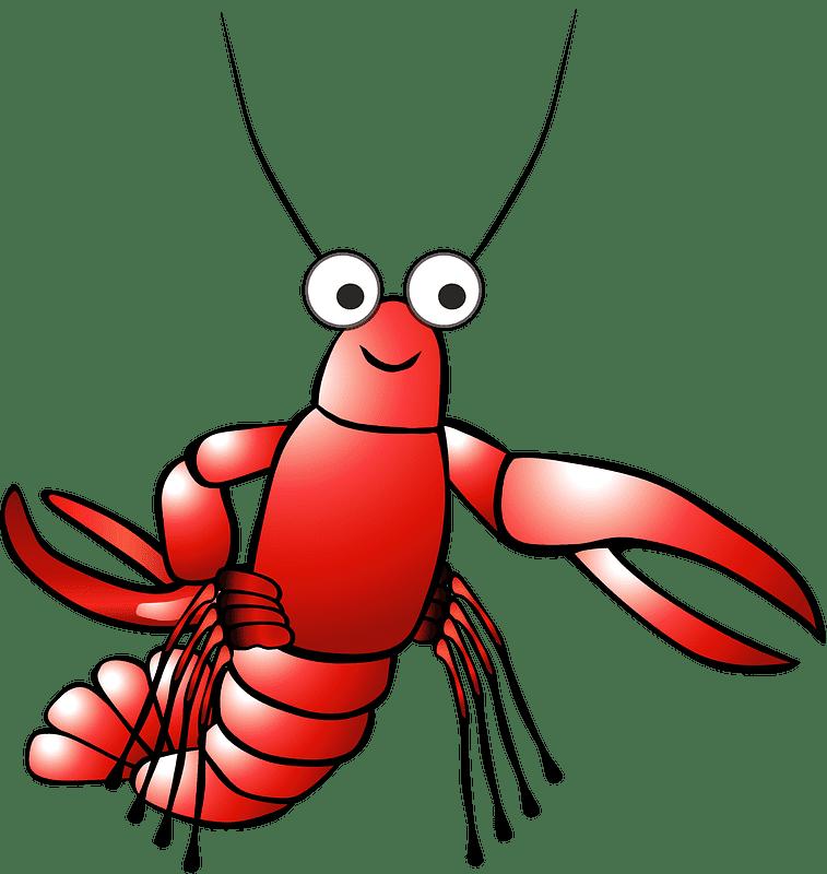 Lobster clipart transparent 20