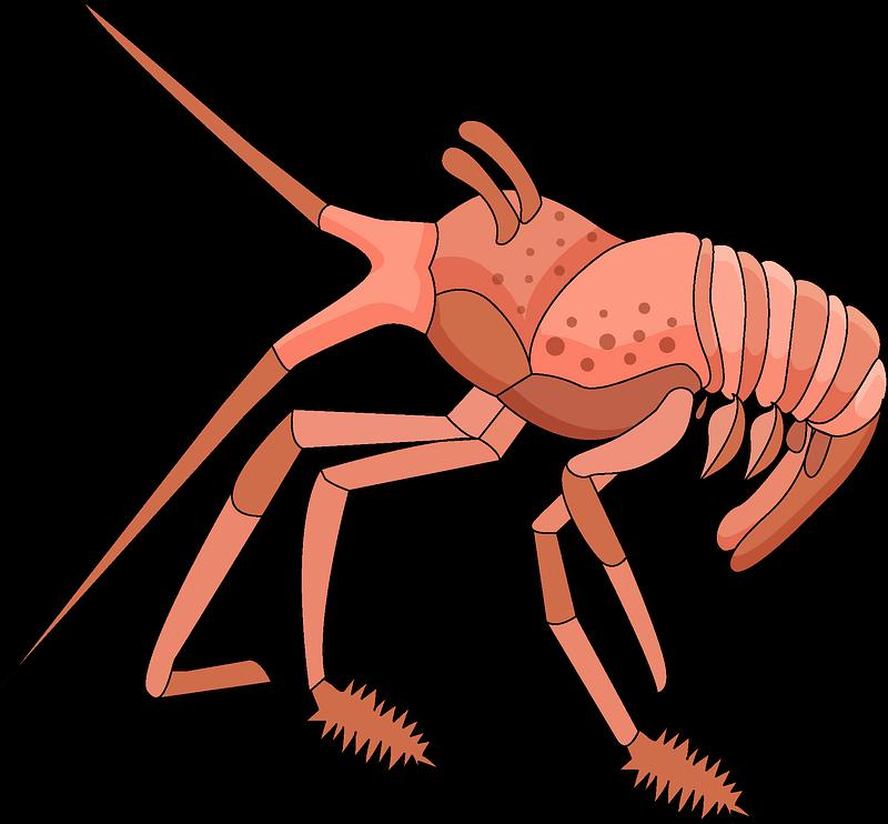 Lobster clipart transparent
