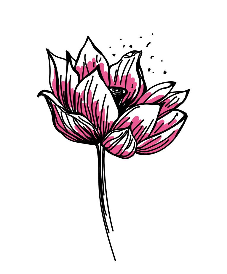 Lotus Flower clipart 1