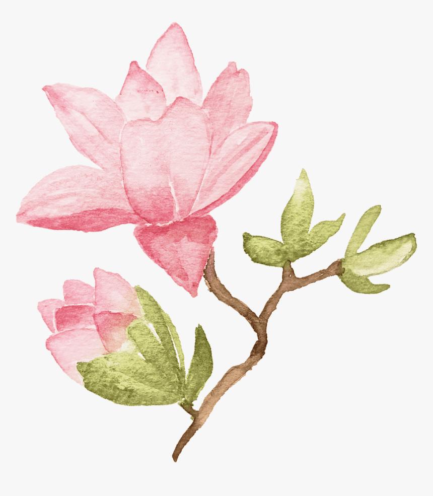 Lotus Flower clipart 10