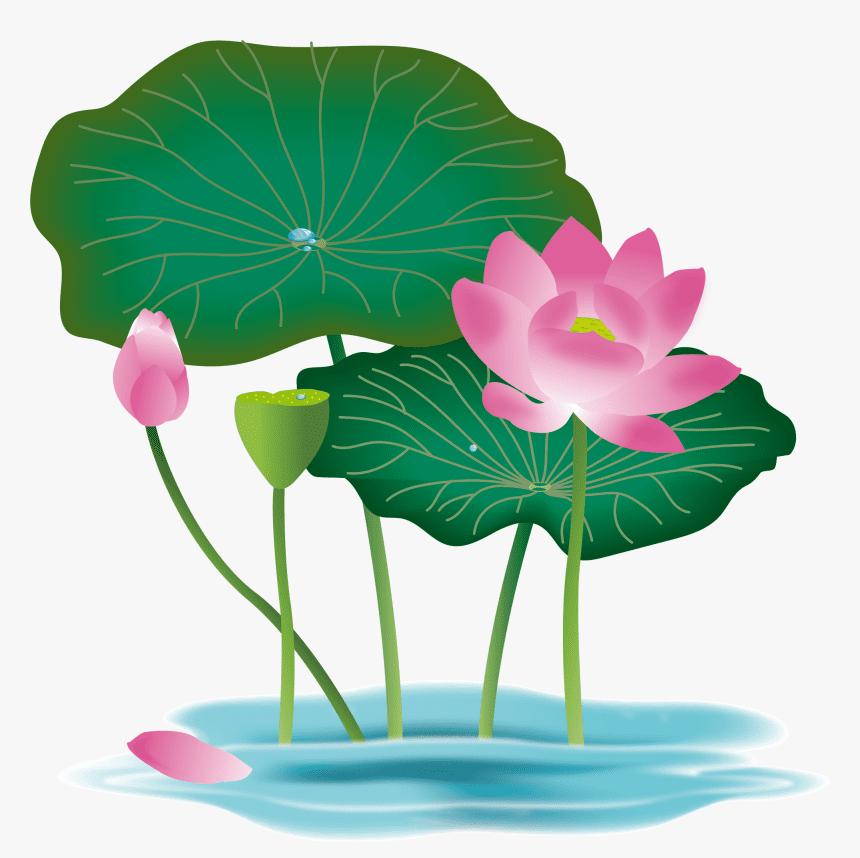 Lotus Flower clipart 2