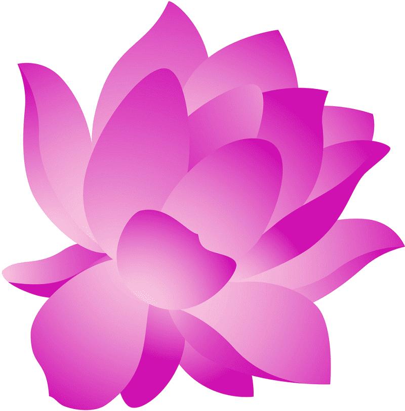 Lotus clipart 1