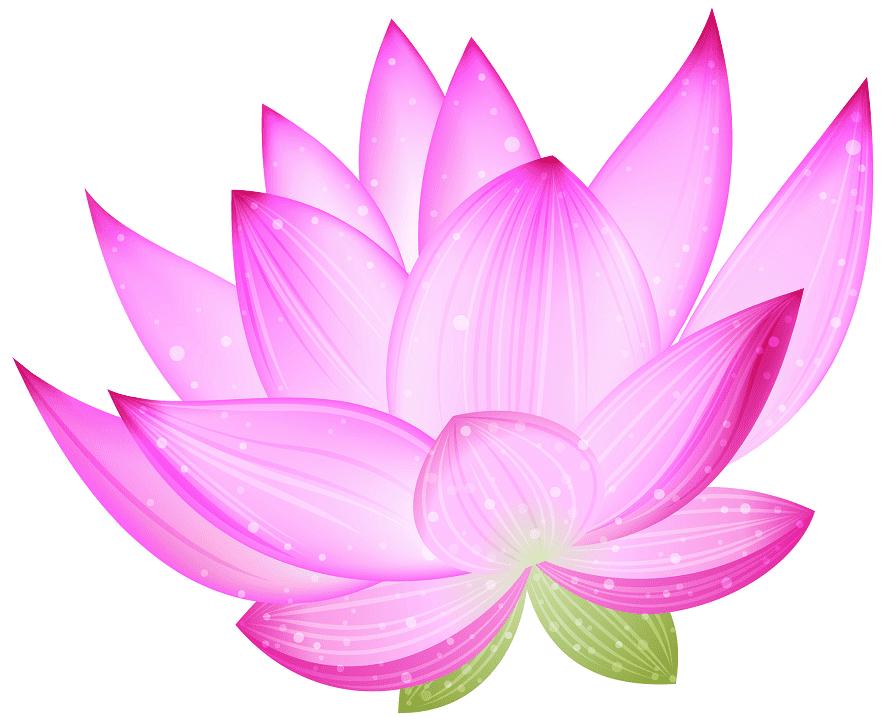 Lotus clipart 8