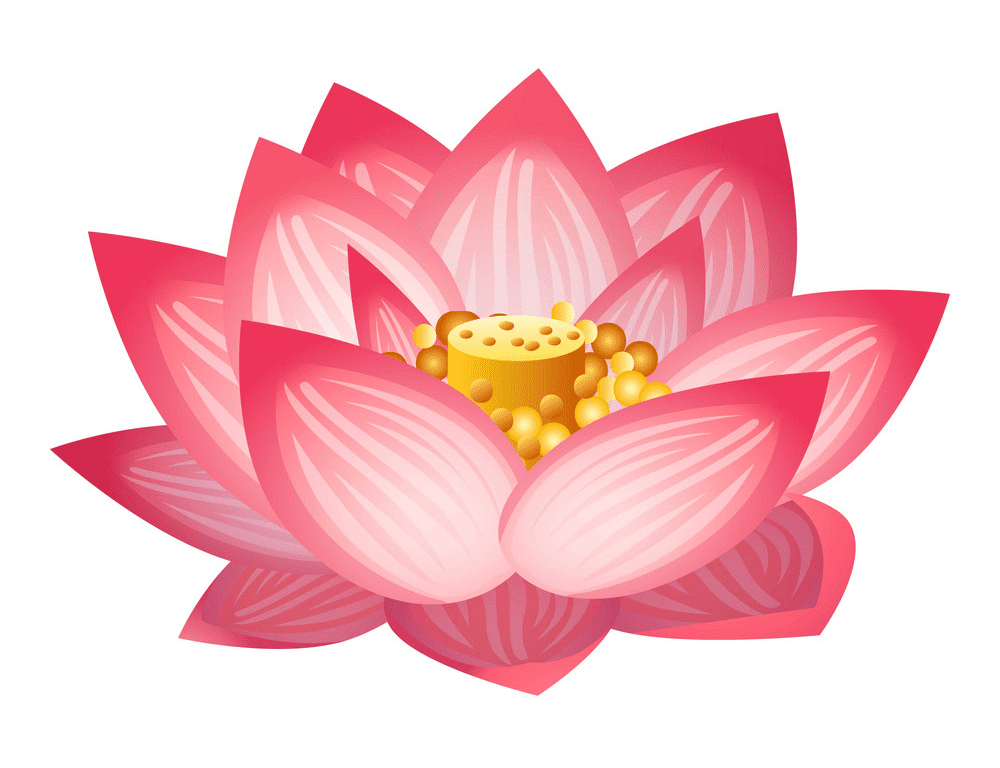 Lotus clipart free image