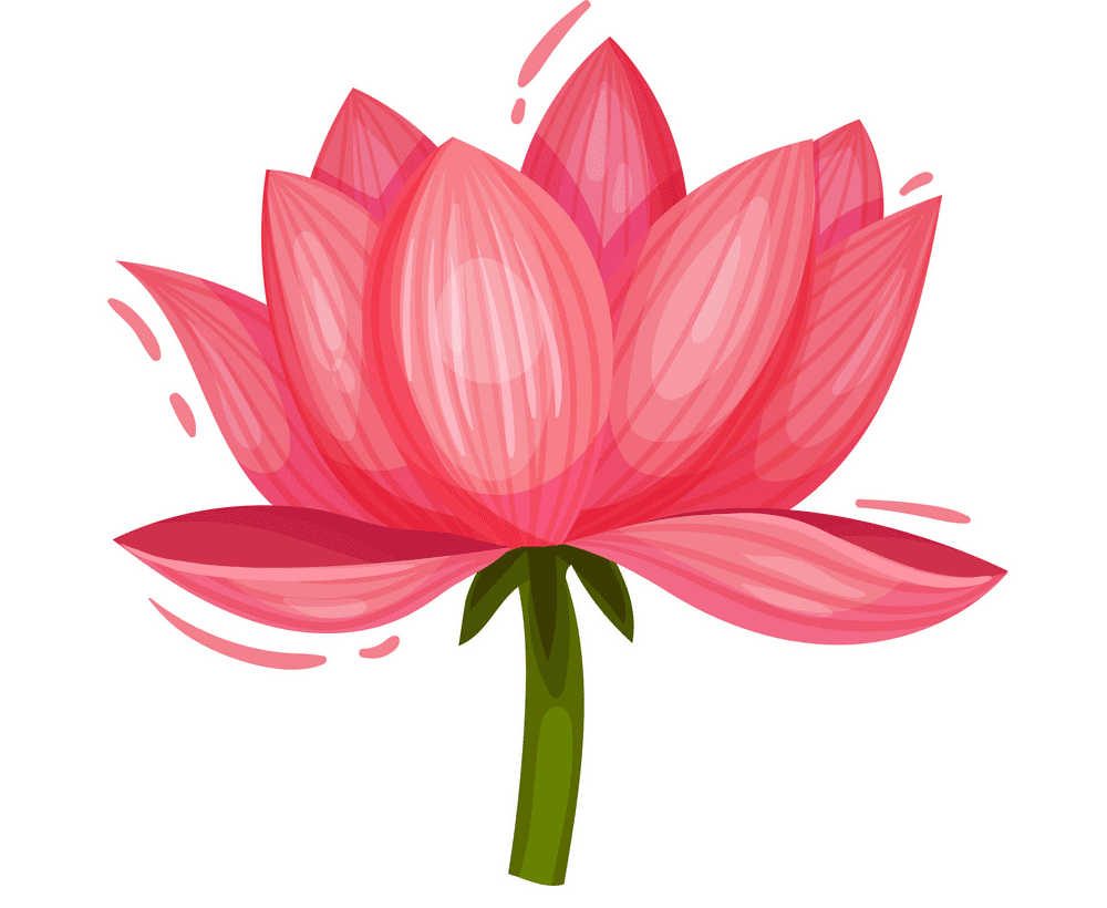 Lotus clipart free