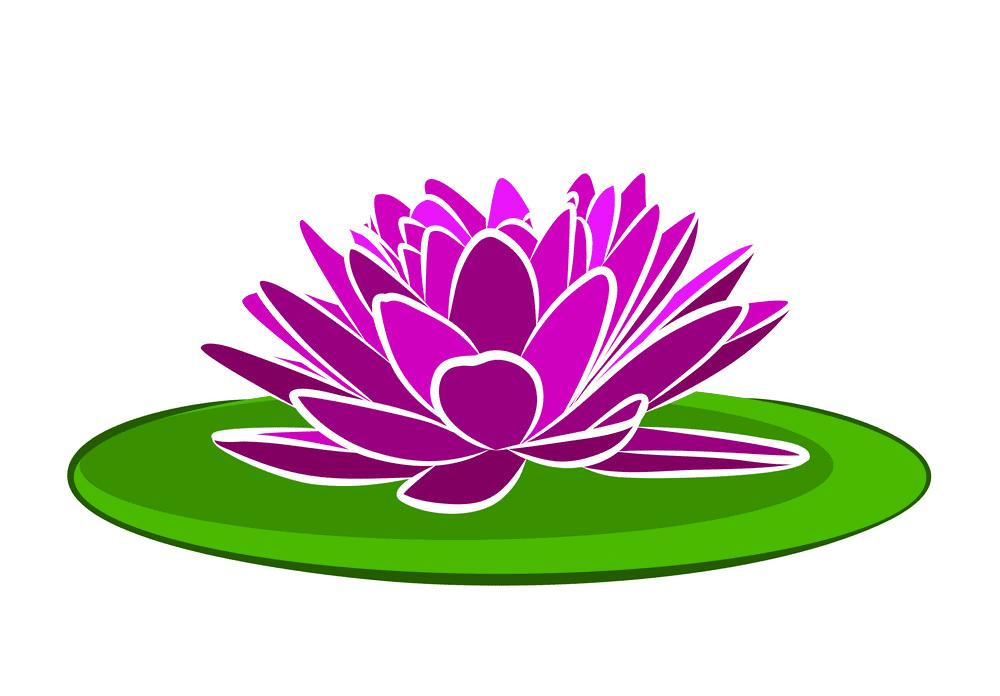 Lotus clipart png