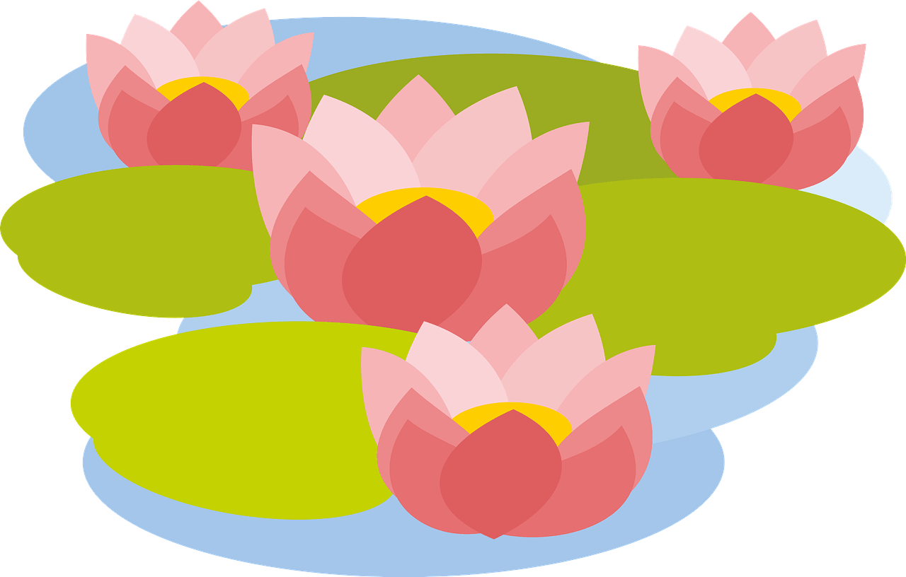 Lotus clipart transparent 10