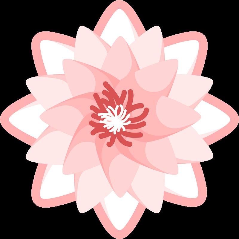 Lotus clipart transparent 11