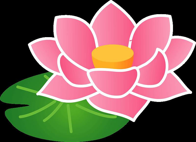 Lotus clipart transparent 12