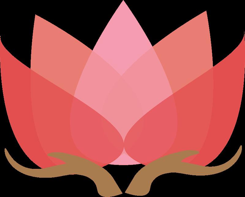 Lotus clipart transparent 13
