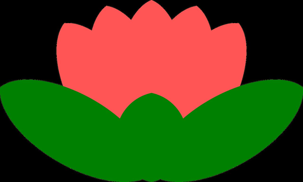 Lotus clipart transparent 15