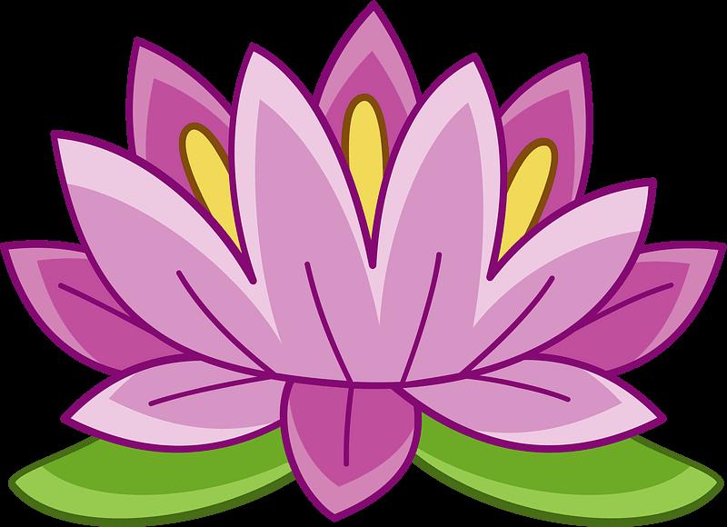 Lotus clipart transparent 5