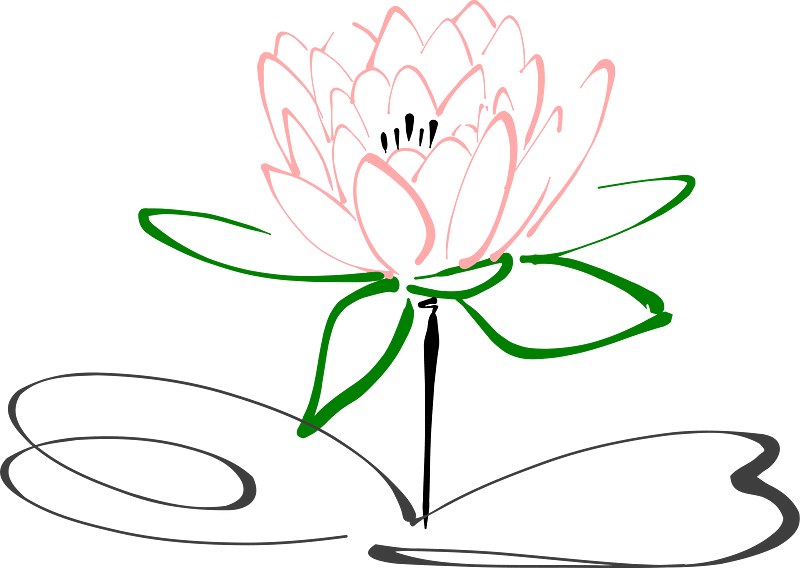 Lotus clipart transparent 9